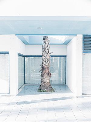 Resort - p1425m1487065 von JAKOB SCHNETZ