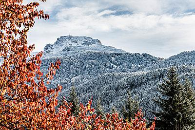 Herbst - p488m1087596 von Bias