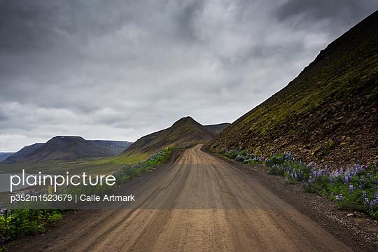 p352m1523679 von Calle Artmark