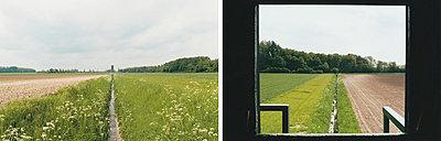 Wiese - p1205m1020931 von Annet van der Voort