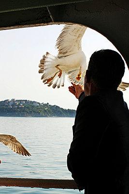 Bosporus. Istanbul - p1063m807787 by Ekaterina Vasilyeva