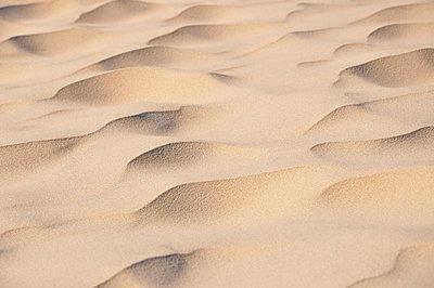 Sand - p851m702233 by Lohfink