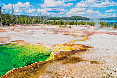 The West Thumb Area With Yellowstone Lake In The Distance - p44211889 by Philippe Widling