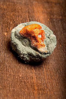 Verschimmelte Mandarine - p451m1516769 von Anja Weber-Decker