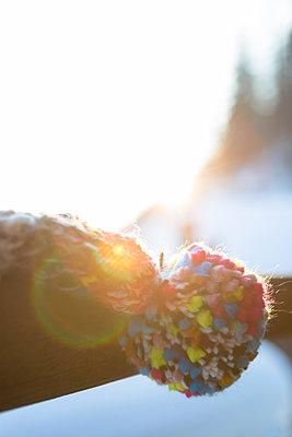 Warming winter sunshine - p454m2124949 by Lubitz + Dorner