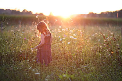 Girl in the evening sun - p916m945674 by the Glint