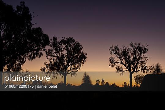 Evening mood - p1668m2288175 by daniel belet