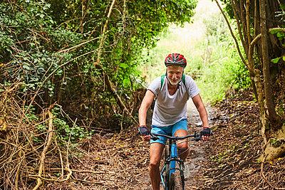 Mature man mountain biking on trail in woods - p1023m2009551 by Trevor Adeline