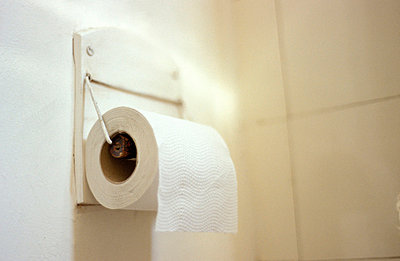 Toilet paper - p1610287 by Kerstin Schomburg