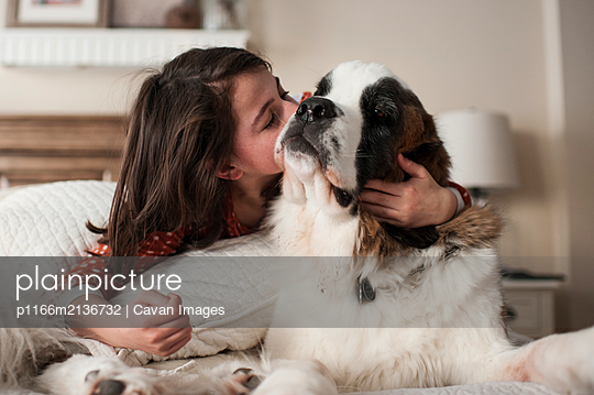 Girl gives dog big kiss on the cheek while laying on bed at home - p1166m2136732 by Cavan Images