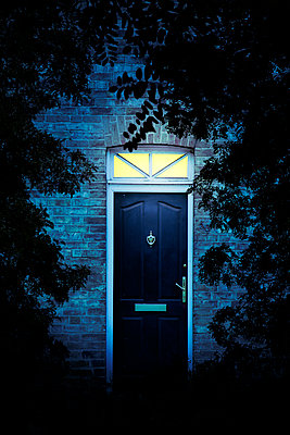Illuminated Front Door framed by leaves - p1248m2200420 by miguel sobreira