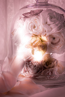 Blumenarrangement - p1371m2090229 von virginie perocheau