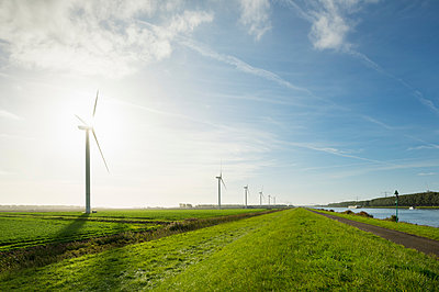 Wind turbines early in the morning, Rilland, Zeeland, Netherlands, Europe - p429m1505018 by Mischa Keijser