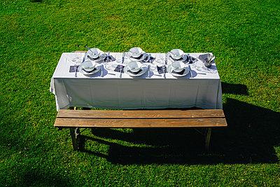 Gedeckter Tisch im Garten auf dem Rasen - p1053m2168304 von Joern Rynio