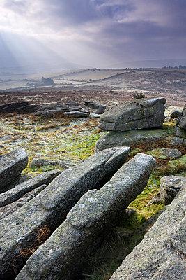 Granite outcrops on Hayne Down, Dartmoor National Park, Devon, England, United Kingdom, Europe - p8713019 by Adam Burton
