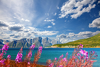 Fjordlandschaft mit grandioser Bergkulisse - p1168m2086880 von Thomas Günther