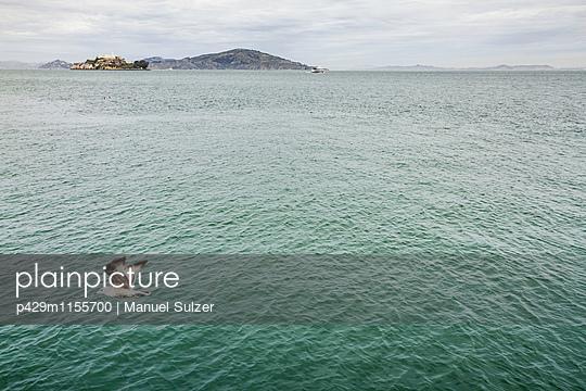 p429m1155700 von Manuel Sulzer