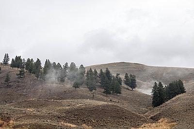 Yellowstone-Nationalpark - p1129m945899 von ROBINSIMON