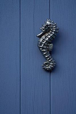 Seahorse deco on wooden door - p1578m2278106 by Marcus Hammerschmitt