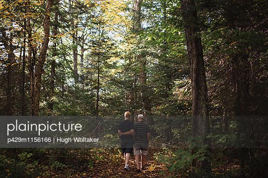 p429m1156166 von Hugh Whitaker