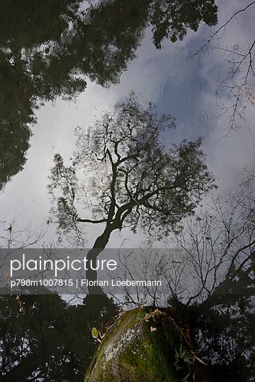 Japanischer Garten, Kyoto - p798m1007815 von Florian Loebermann