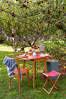 Red table and chairs under apple tree with bunting in Isle of Wight garden;  UK - p349m920016 by Rachel Whiting