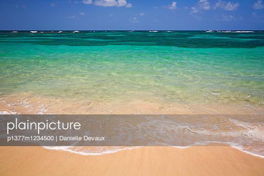 Anse la Voute,  East coast, Clear ocean - p1377m1234500 by Danielle Devaux