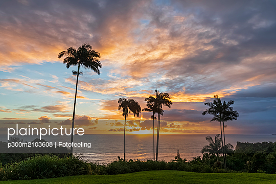 USA, Hawaii, Big Island, Onomea Bay at sunset - p300m2103608 by Fotofeeling