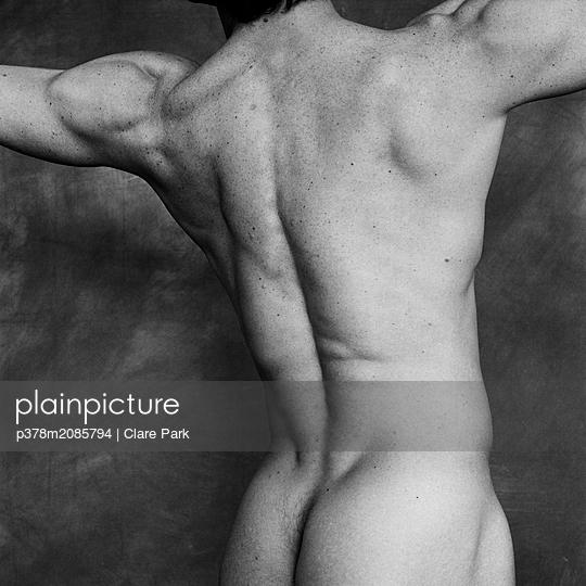 male torso ii - p378m2085794 by Clare Park