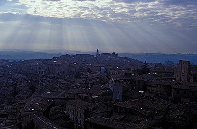 Siena, Italien, Panorama - p2686593 von Katarzyna Zommer