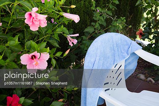 Trocknen - p1057m1161687 von Stephen Shepherd