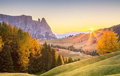 Alpe di Siusi, South Tyrol, Italy - p651m2033122 by Stefano Termanini