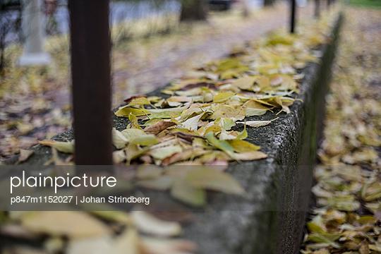 p847m1152027 von Johan Strindberg