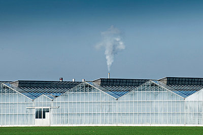Smoke from large industrial greenhouse - p429m802933f by Arno Masse