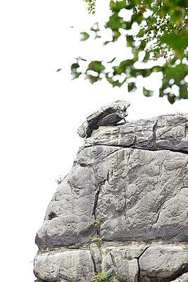 Der Kippelstein bei den Externsteinen - p606m852238 von Iris Friedrich