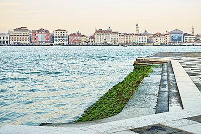 Venice seen from shore with algae - p1312m1575218 by Axel Killian