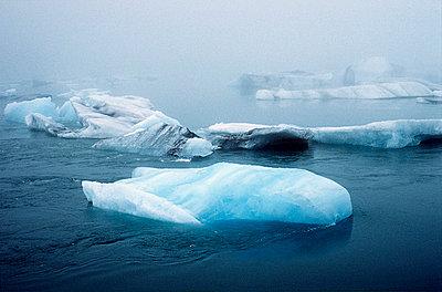 Kälte - p4700026 von Ingrid Michel