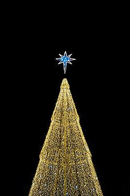 Weihnachtsstern Beleuchtung - p1312m1575193 von Axel Killian