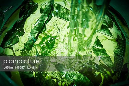 Salat zubereiten - p851m1148657 von Lohfink