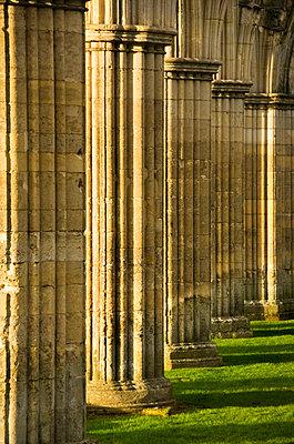 Rievaulx Abbey. The winter sunshine catches the stone columns at Rievaulx Abbey. - p8551782 by James O. Davies