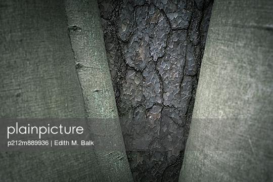 Rinde - p212m889936 von Edith M. Balk