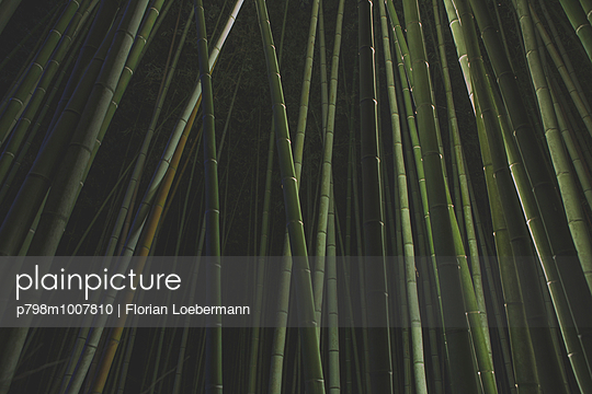Arashiyama, Kyoto Japan - p798m1007810 von Florian Loebermann