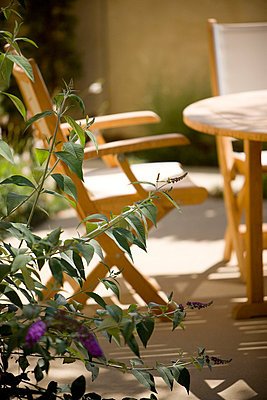 Canvas Chairs in Outdoor Dining Set - p5550387f by LOOK Photography