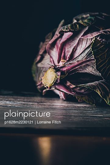Ornamental cabbage - p1628m2230121 by Lorraine Fitch