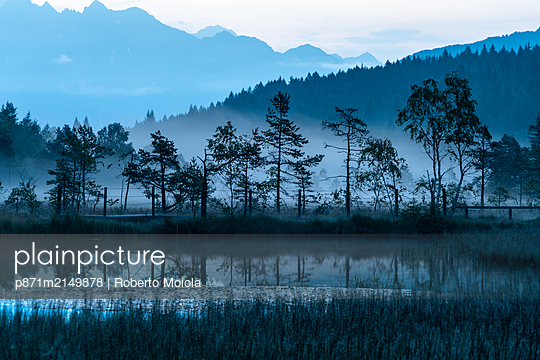 Dusk over trees mirrored in the swamp of Pian di Gembro Nature Reserve, Aprica, Sondrio province, Valtellina, Lombardy, Italy - p871m2149878 by Roberto Moiola