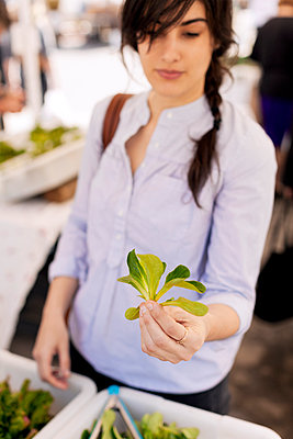 Woman holding leaves of vegetable while standing at market stall - p1166m995202f by Cavan Images