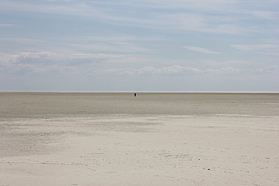 Wadden Sea when the tide is out - p1268m2107427 by Mastahkid
