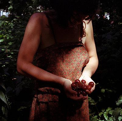 Fresh cherries - p990m853114 by Michael Dooney
