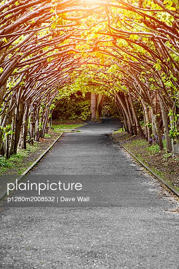 p1280m2008532 von Dave Wall