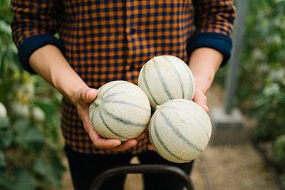 Farmer holding fresh organic melons at farm - p300m2286558 by Manu Padilla Photo